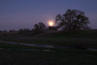 Original Raw Image of Foreground.  Note that moon looks like a bright white blob.