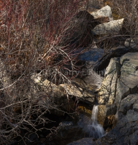 A Small Tributary from Eagle Falls, Lake Tahoe.