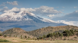Mt Shasta - Perspective 1, MAY 2015