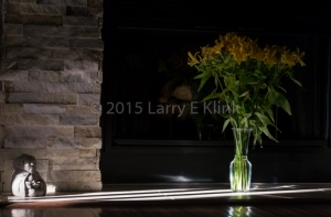 The setting sun cast a narrow beam of light that caught the fireplace in our family room, highlighting St. Francis looking upon the freesias.