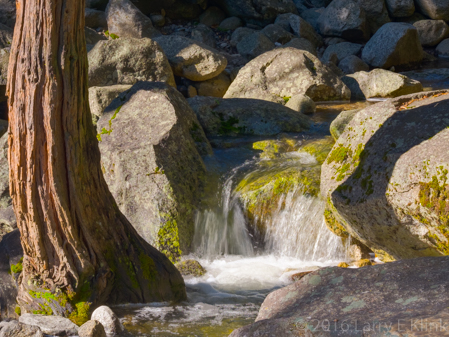 Rivulet on Yosemite Creek