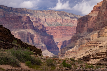 Grand Canyon - Perspective 2
