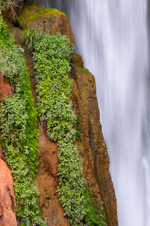 Deer Creek Falls - Perspective 2