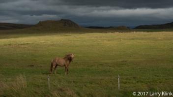 20170903-Iceland-West-047-Web