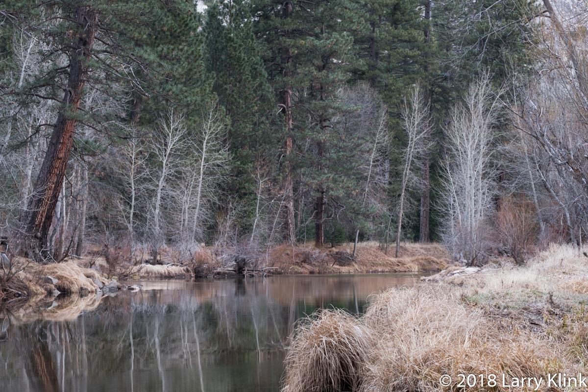 Merced River from Swinging Bridge Meadow, Yosemite National Park, CA; FEB 2018