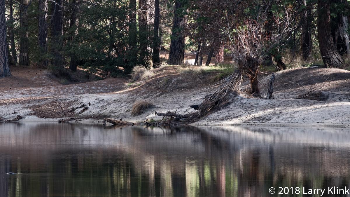 Along the Merced River Near El Capitan Bridge