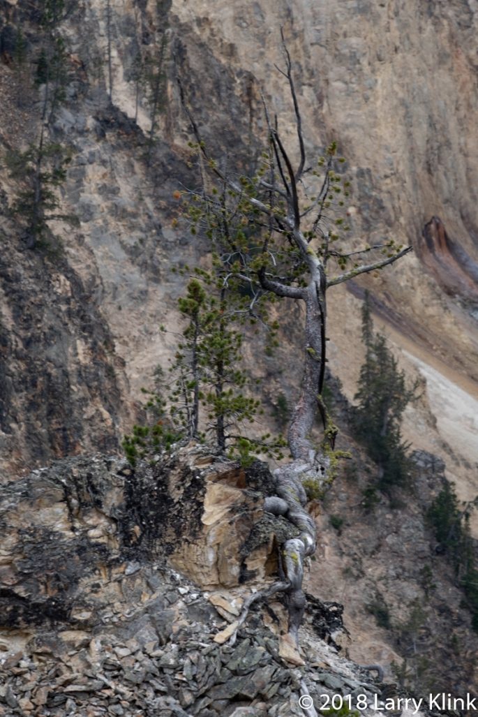 20180907-Yellowstone-066-On1Efx-Web