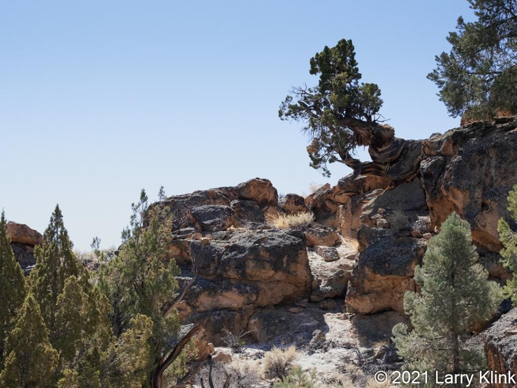 Images from the California/Nevada desert.