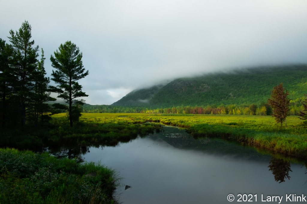 Photograph of a foggy sunrise over a pond, meadow forest, and hillside. From Acadia National Park.