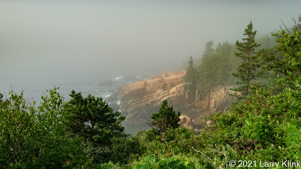 Photograph of a sunrise, with fog, at a tree lined, rocky cliff over the Atlantic Ocean at Acadia National Park, Maine, USA